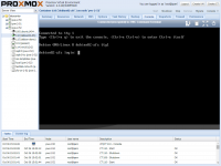 product:Proxmox-screen-lxc-console.png